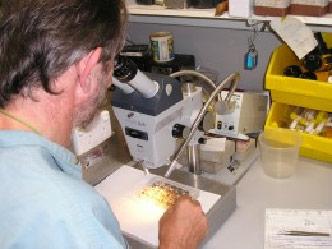 Mosquito Science